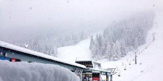 Raport śniegowy: Spore opady śniegu w części Alp austriackich i szwajcarskich