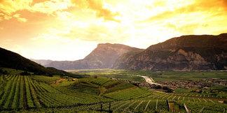 Trentino im Sommer - ©Trentino