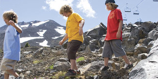 Hike Mt. Bachelor for Wildflower Displays - ©Mt. Bachelor Resort