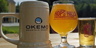 Mountain Getaway Summer Beer & Wine Festival Guide - ©Hops in the Hills Brewfest