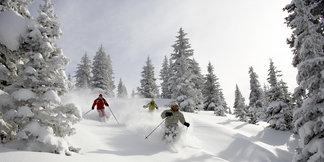 Vail Snow 101