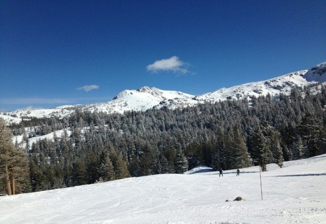 wonderful day yeaterday, just enough powder for a fun day. Watch out for sunburn!