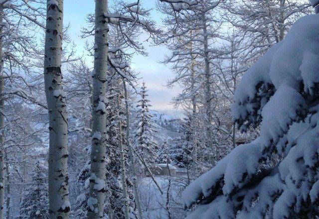 :)snowmass