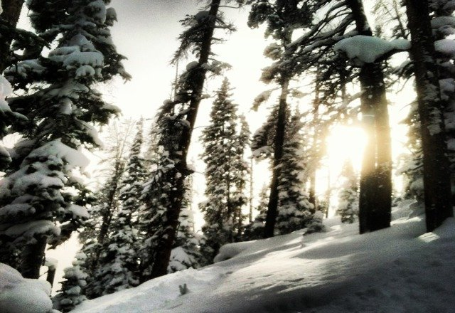 Nothing better than some freshies on the last run of the day!