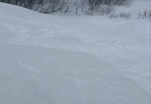 there was some mad pow last night at least 10 inches in places really really great