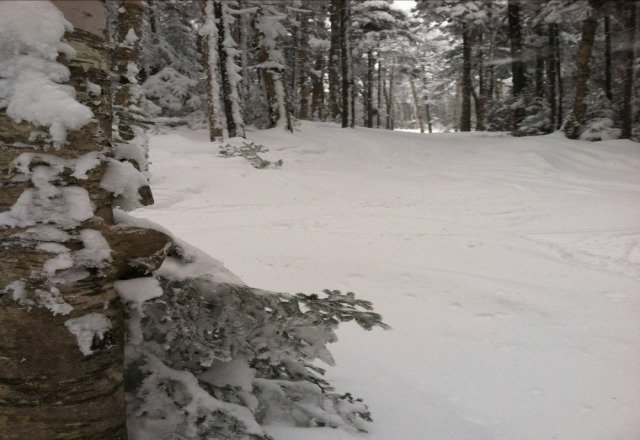 amazing snow, best ive seen in new england for a long time. no lift lines, awesome glades.