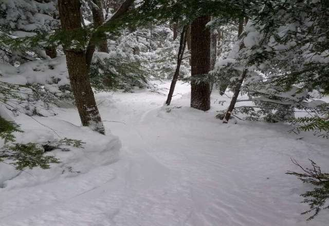 Awesome day. Best day of riding of the year. Glades were a blast.