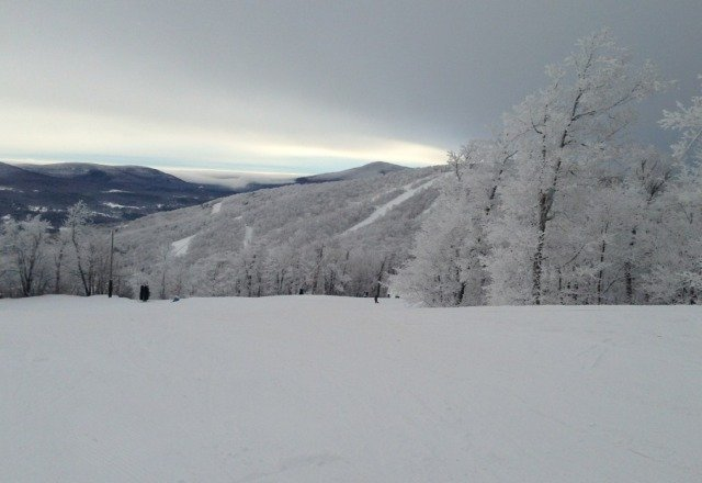 Picture taken at Windham this morning just before the snow started (in earnest)!