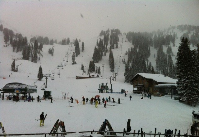 snowing all day !