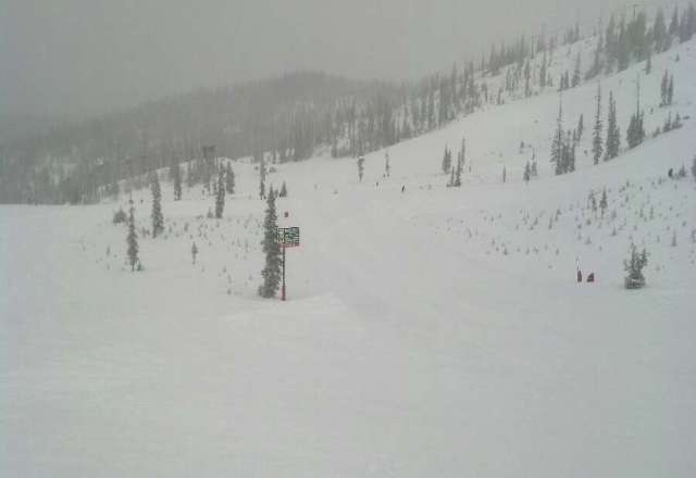 whatever? on these posts, im from Denver and this is the most variety of powder iv seen this year and last! lovin it!
