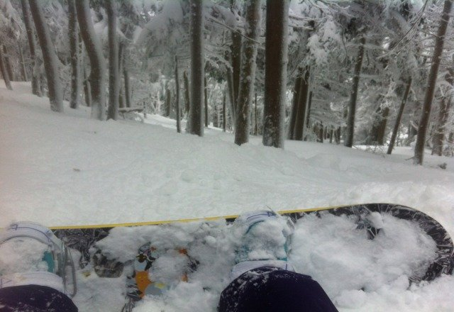 Nice, soft powder everywhere. Tree runs are amazing, but be prepared to dig yourself out.