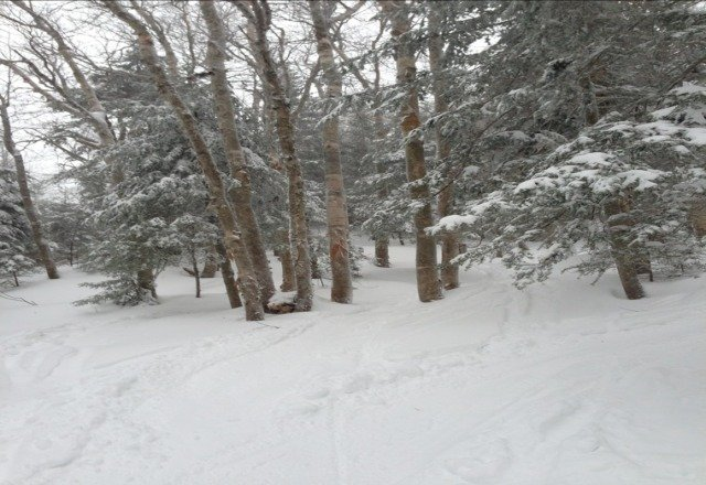 this first pic is from thursday.  awesome day.  there was closer to 15 inches.