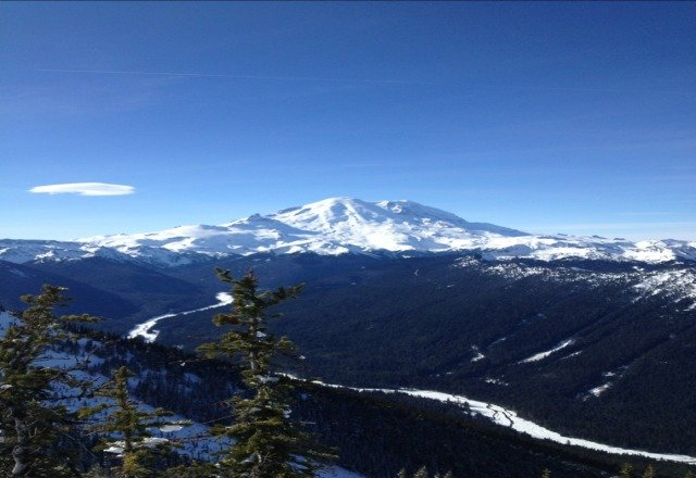 It was a good sunday to go up to Crystal- snow was pretty good not icy . Clear and sunny, almost spring-like day. Beautiful!
