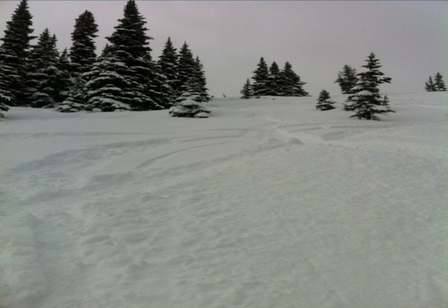 Some of the best snow of the year - hard to believe its spring... Sunday was great!