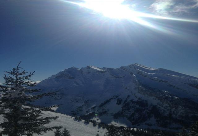 Amazing conditions!!