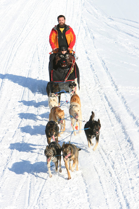 A dogsledder makes his way across Boyne Highlands, Michigan