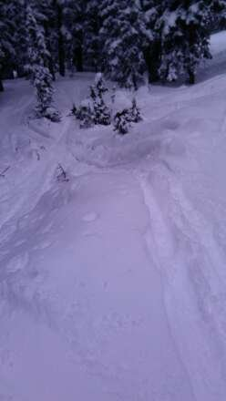 amazing day!! so much untouched powder! every run still has powder