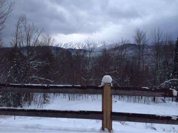 View from my house fresh pow today
