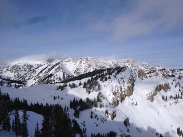 Great skiing, bumps were soft and fun.  Main trails got icy in the afternoon. Powder if you were looking for it.