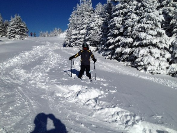 Knee deep powder in the trees .  Go Scotty !!