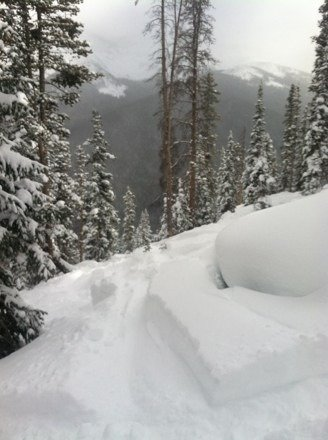 Tophers trees were awesome yesterday. Lots of untracked waist-deep pow still left in there. Definitely worth the hike.