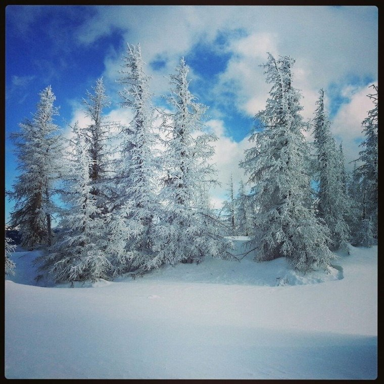 LOVE U WOLF CREEK!!! our view from the top of Treasure Lift! sooo gorgeous today!! sooo much POWDER!!