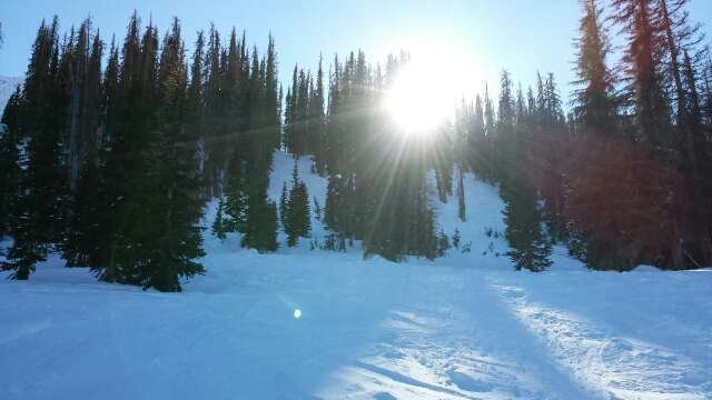 Couldn't have asked for a better day to ski. Still fresh powder though the trees. Slopes groomed nicely. Sun shining.