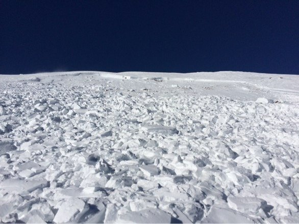 Here's that avalanche off of the whales tail, those chunks are about the size of a small car...