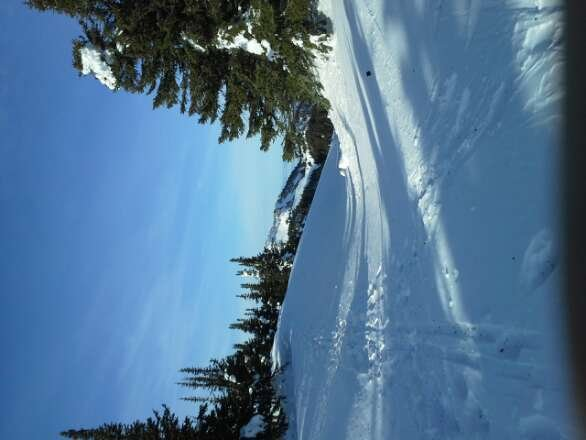 good groomed runs. wait till the Sun comes up to soften the snow. mount morsley had better snow. the backcountry gils was good early in the week but pretty tracked up now. I did see askrv in the parking lot last week