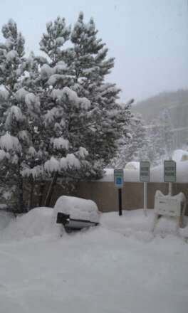 1' in Lion's Head parking lot and it's still coming down. You do the math.
