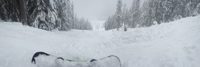 Great day no lines and great  powder found on sides and trees