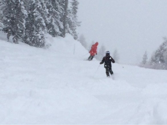 Amazing day. Visibility a little poor. But conditions pure powder.   Can't wait for tomorrow!!!!!!!