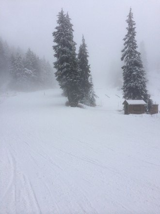 Snow was ok. Groomed with some fresh on top. Few icey and thin patches. Only down fall was the fog.