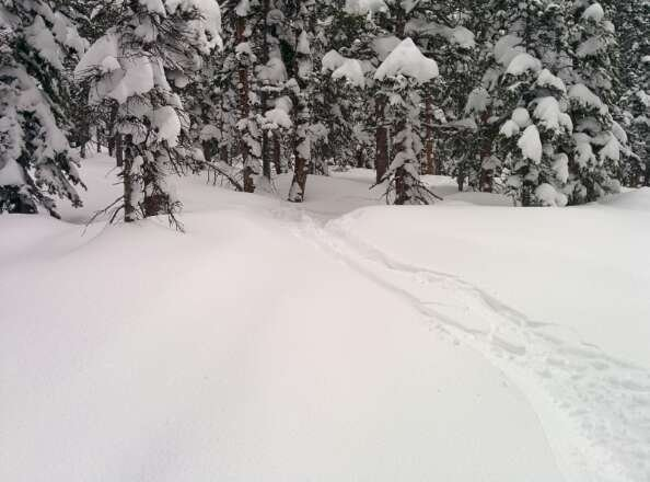 Powder everywhere.