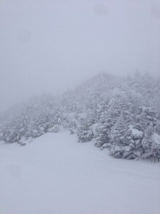 Great Pow today...Tomorrow will be crazy!