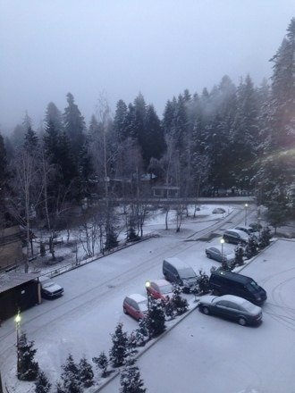 Nice morning Snowfall , hope the upper slopes got way more . Fingers crossed .