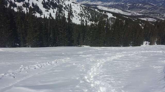 got powder? lol back of peak 9 (hiked)