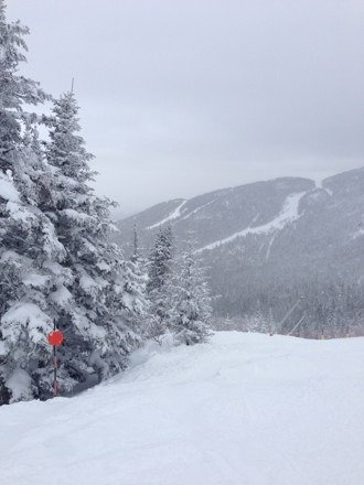 A FOOT of fresh powder on Friday. Amazing day of riding. Did a lot through the trees, awesome coverage everywhere!