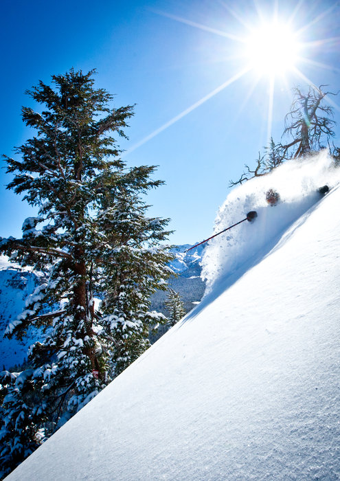 It doesn't get much better than deep pow and California sunshine. - ©Peter Morning
