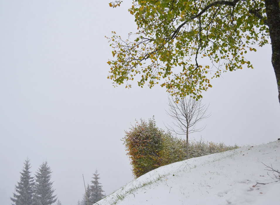 22. Oktober - Schneefall im Kleinwalsertal - ©Kleinwalsertal Tourismus