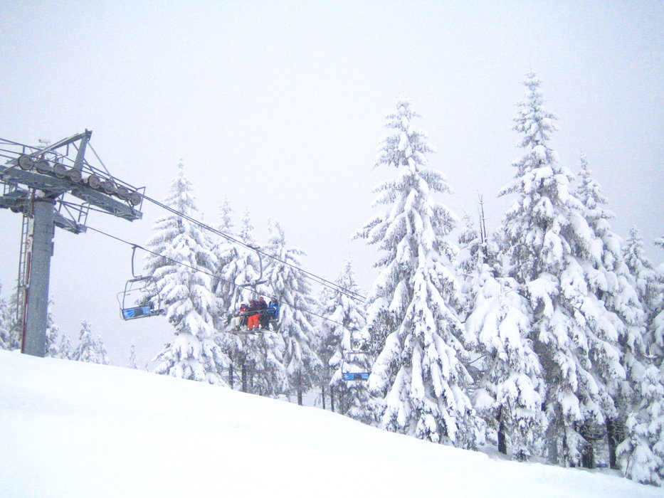 Harrachov - ©bobomam @ Skiinfo Lounge