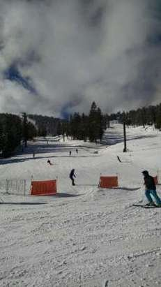 The few runs that are open are in really good shape.  Pray for more snow.
