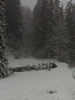 Snowing all day and still going! Loads here now! It's all looking great!