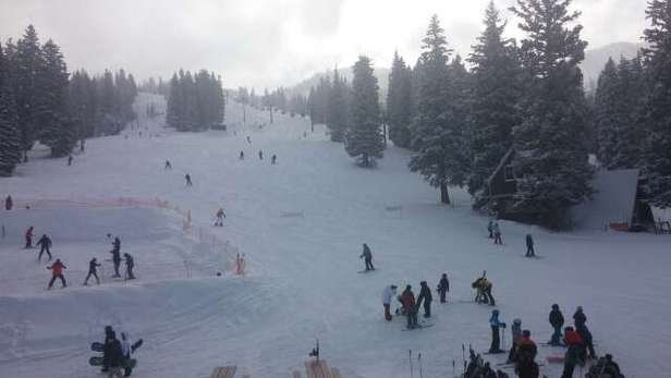 little crowded but not bad, soft fast snow, still plenty of powder t poo be had in the trees!