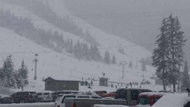 Wet at the bottom but snow is coming down good.  Wish I could go today!