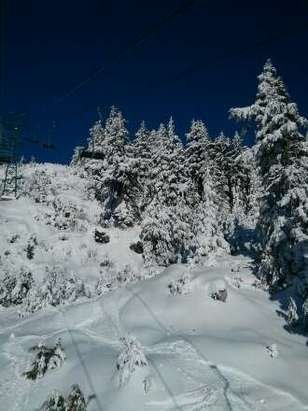 nice weather, the snow condition is good for the opened runs.