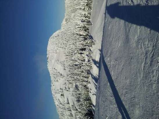 Cold and clear. Groomer runs but the cool temp makes for some fun speed runs. #prayforsnow !