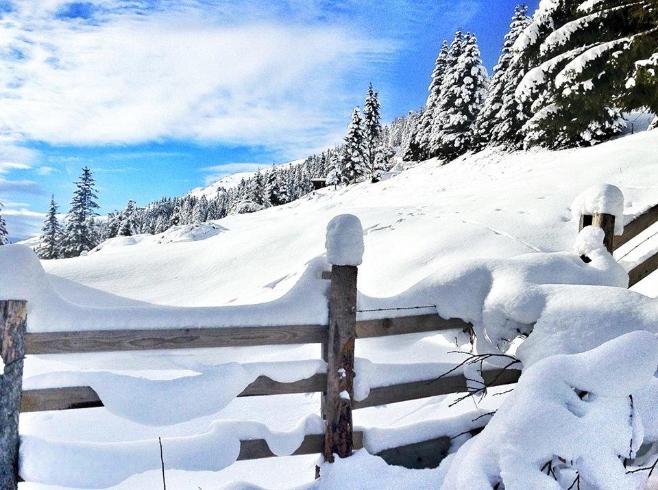 Mayrhofen Jan. 8, 2015 - ©Mayrhofen Hippach im Zillertal