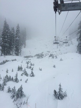 Chair 1 only opened today, solid rain crust , only groomed a few passes but still super fun