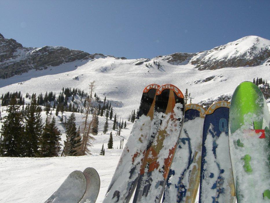 Alta Ski Area - ©Henning Pettersen | skitoy @ Skiinfo Lounge